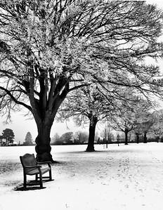 A snowy winter day in Berkhamsted UK.