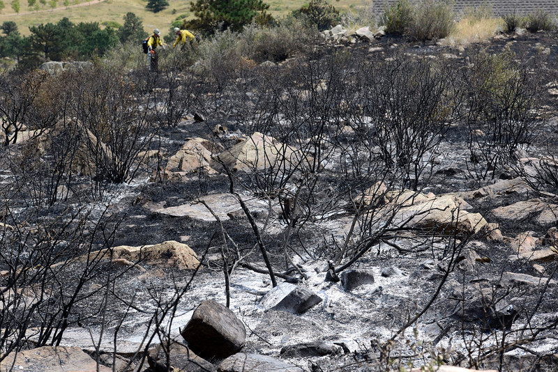 The brush and ground are charred Thursday, Aug. 18, 2016, on Hertha Ridge after a wildfire started there Wednesday southeast of Carter Lake. The 73 acre fire was 65 percent contained eary Thursday. (Photo by Jenny Sparks/Loveland Reporter-Herald)