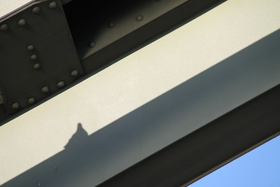 My husband saw this silhouette of the dove on a support beam on a bridge in Cologne, so he grabbed my camera and shot it. Love it!