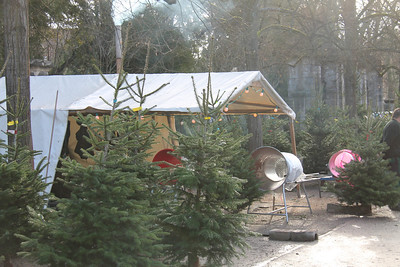 Wurtzburg...Christmas trees, when purchased, are stuffed through the cylinder to wrap them in netting, making transport home easy.