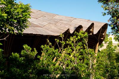 Neo Farm (Thailand)