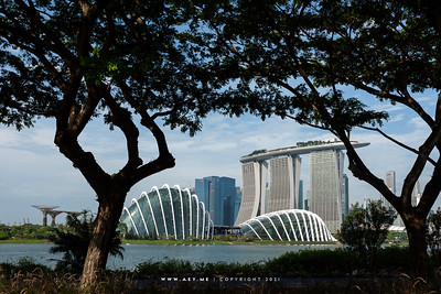 Gardens by the Bay and Marina Bay Sands