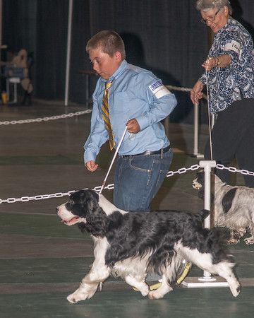 Hickory April 2016 Dog Show