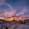 แค้มป์ปิ้ง ใน Hidden Valley ใต้ ต้นโจชัว และปีนป่ายภูเขาหิน ณ อุทยานแห่งชาติโจชัวทรี - Joshua Tree National Park , แคลิฟอร์เนีย - California , สหรัฐอเมริกา - USA