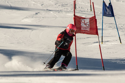 Ashlynn Anderson No. 7 (DCWST) Grenier Law Group GS Race U8-U19 - Wisp Resort
