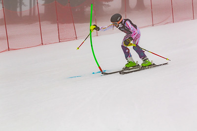 02-11-2018 - 2018 Willis Ski Shop SL U8-U14 at Seven Springs