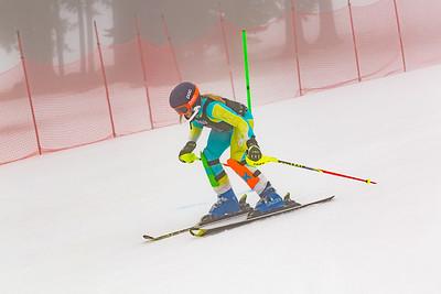 02-11-2018 - 2018 Willis Ski Shop SL U8-U14 at Seven Springs