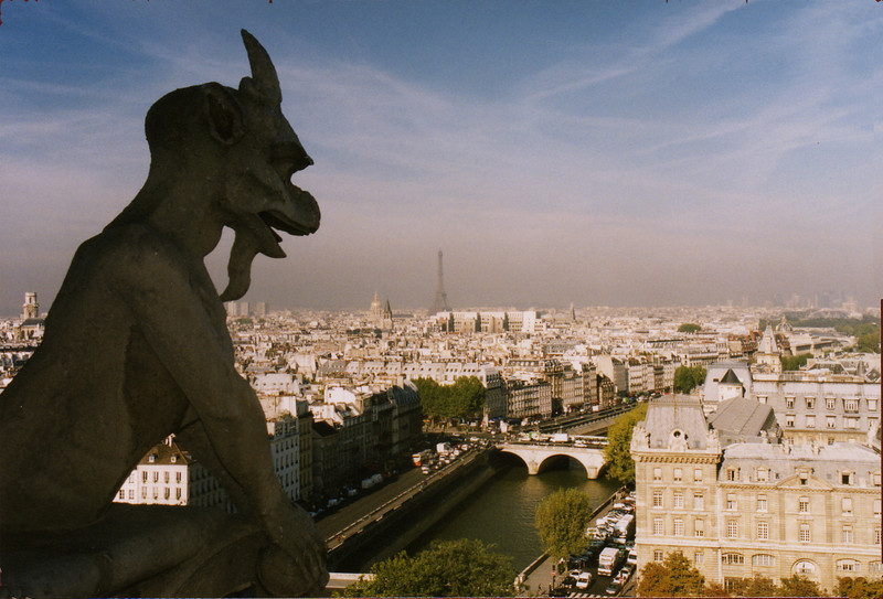 View from the top of Notre Dame