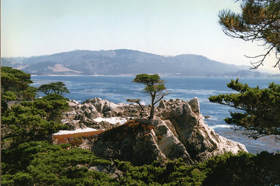 Cypress Point at Pebble Beach