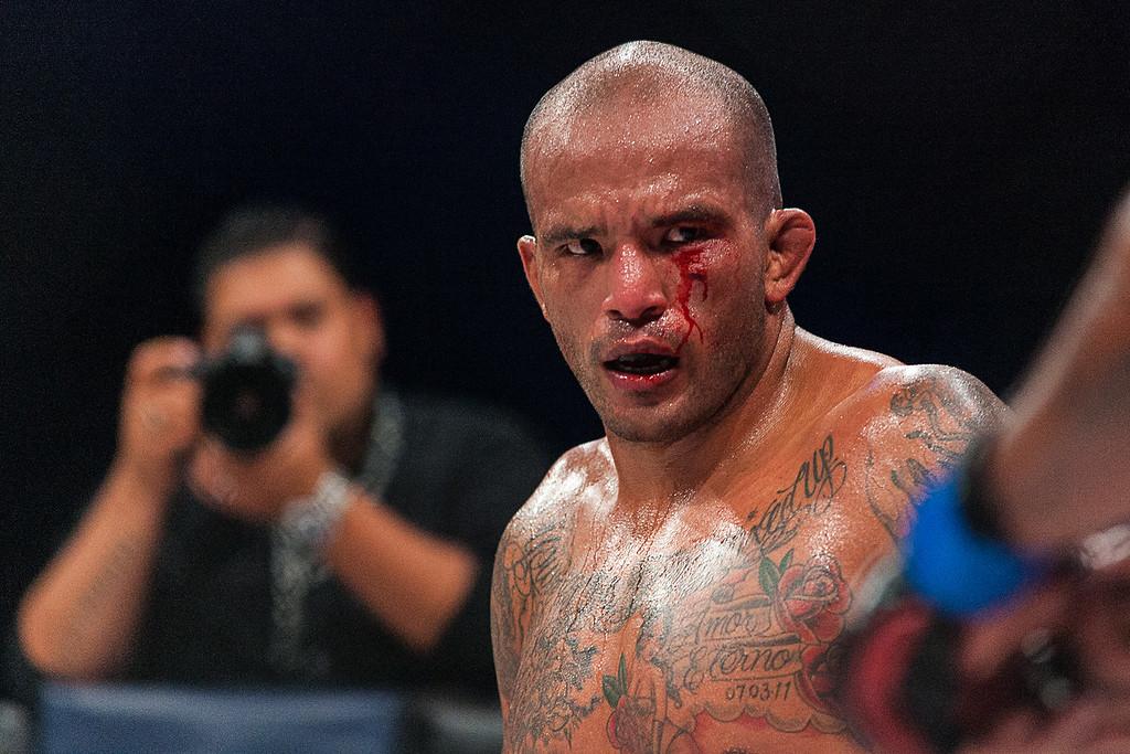 Bellator MMA Michigan 2014-0274