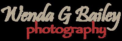 WendaGBailey_Logo (1)
