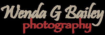 WendaGBailey_Logo