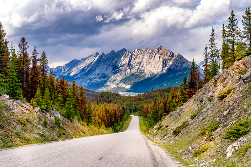 Sirdar Mountain Peaking over the Maligne Lake road