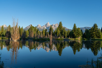 Sunrise at Schwabacher Landing