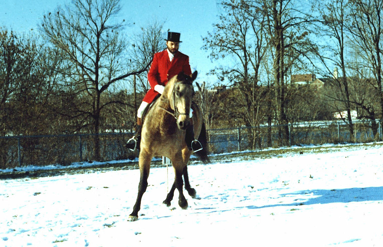 Cow and Tony Lowell 1976 Dressage Demonstration