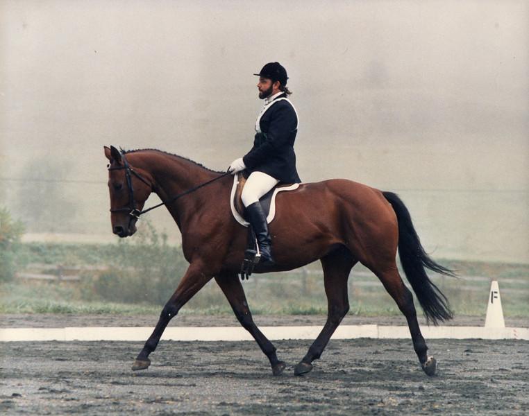 Kid (Lorelei's Prayer) GMHA Horse Trials c1988