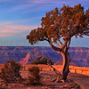 A 5 image HDR image taken at sunset from Grand View Point, Grand Canyon National Park, Az. This images reminds me of a Maxfield Parrish Print.  HDR