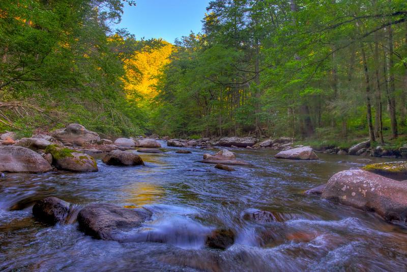 Smoky Mountains 0610-1774