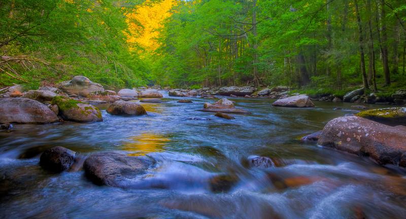 Smoky Mountains 0610-1769