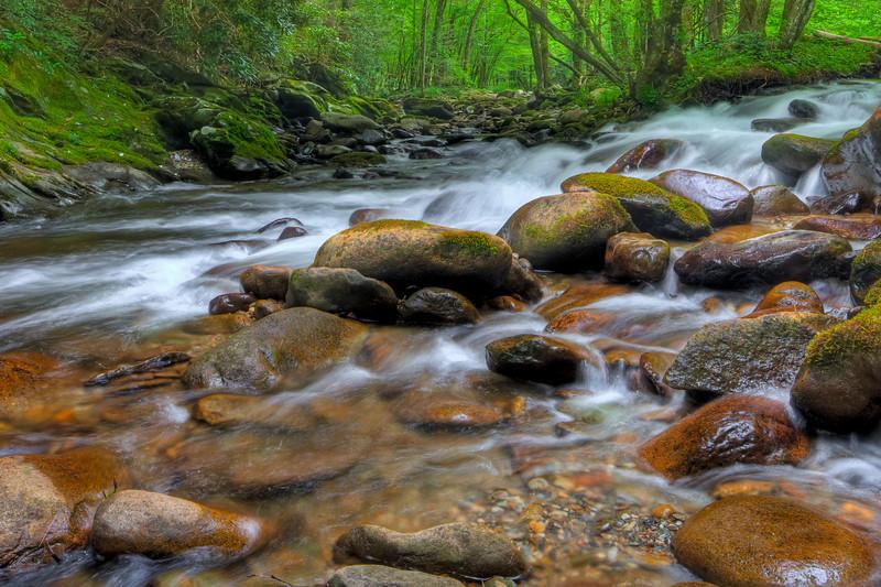 Smoky Mountains 0610-1013