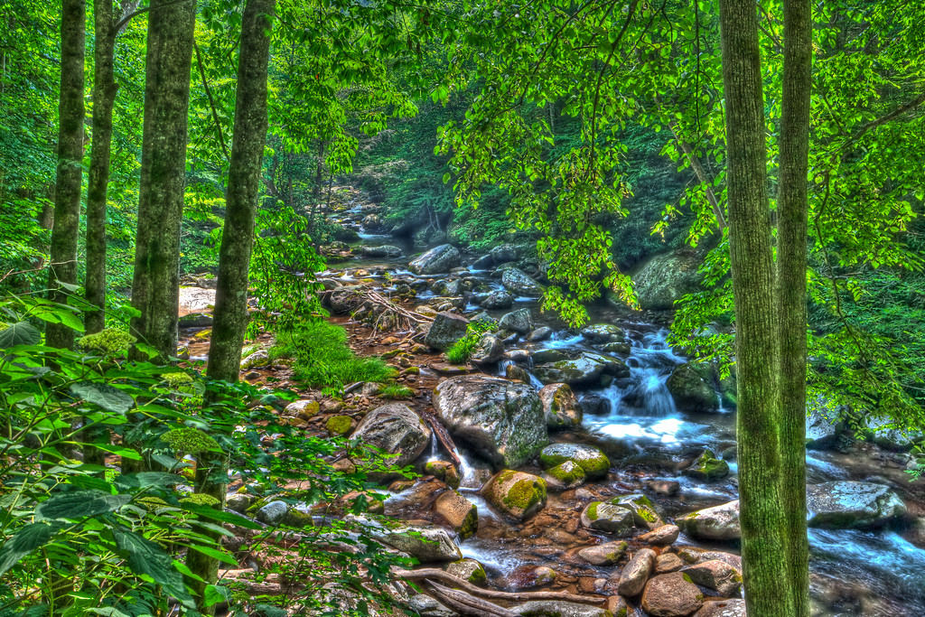 Smoky Mountains 0610-