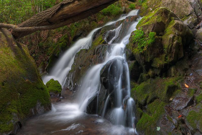Smoky Mountains 0610-1110