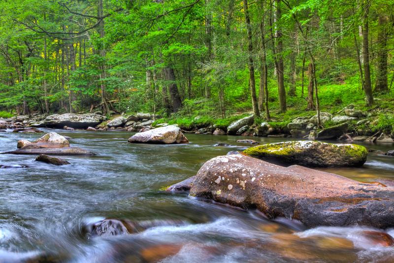 Smoky Mountains 0610-1764