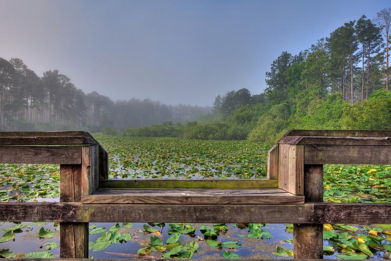 Quarry Pond 052210-4