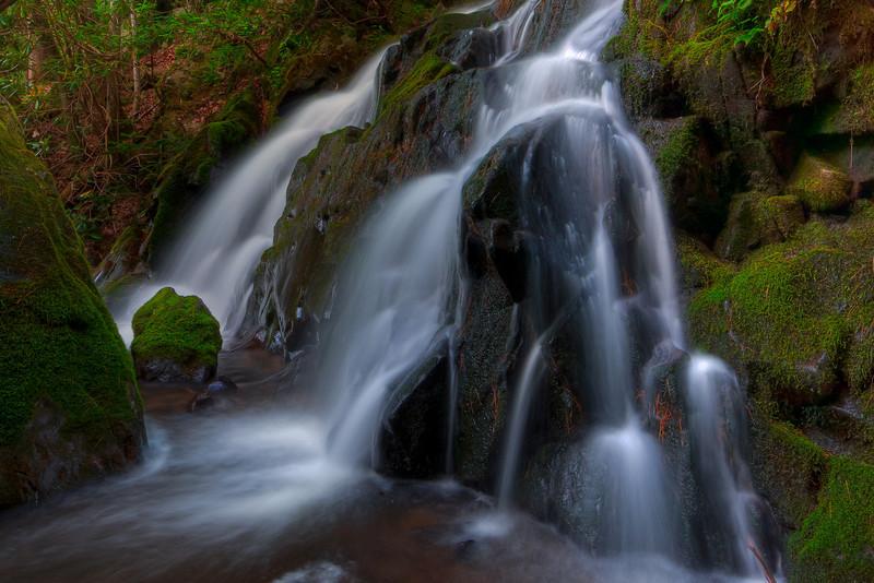 Smoky Mountains 0610-1117
