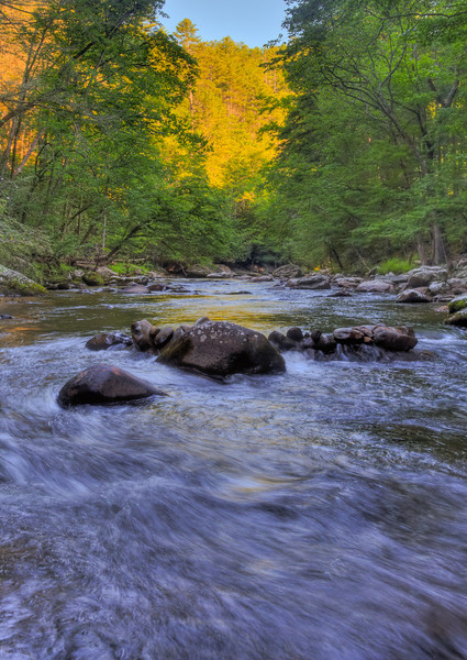 Smoky Mountains 0610-1784