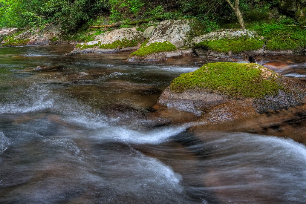 Smoky Mountains 0610-1047