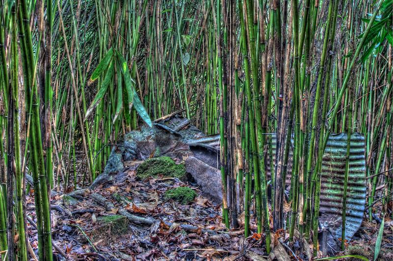 20091213-bamboo junk