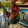 """The Rooster""<br /> Buttonwood Park Zoo<br /> New Bedford, MA<br /> September 6th, 2010"