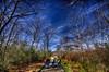 """Path to the Great Swamp Massacre Site""<br /> April 1st, 2012<br /> West Kingston, RI"