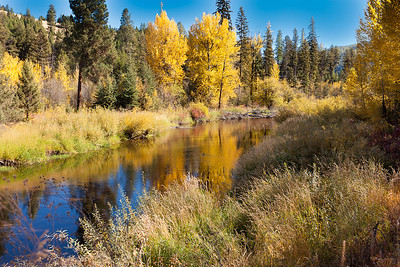 Clearwater River Near Seeley Lake, MT