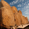 Hay Rolls near Grangeville, ID - Note file name for ordering