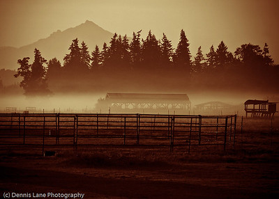 Foggy Field - Western Washington - file name for ordering listed below