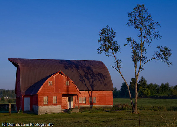 Morning Barn - Western Washington - file name for ordering listed below