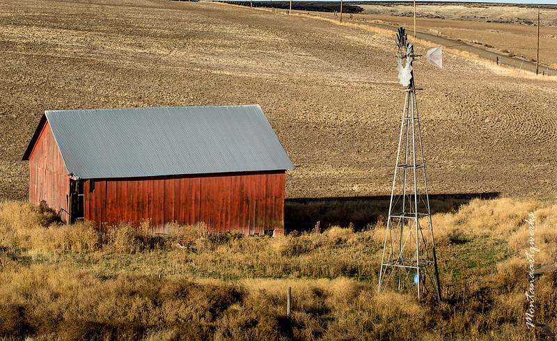 Old Barn Near Condon