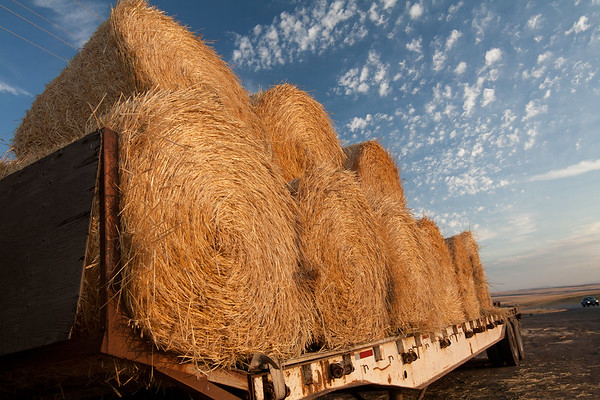 Hay & Sky - Central Idaho - Please note file name for ordering
