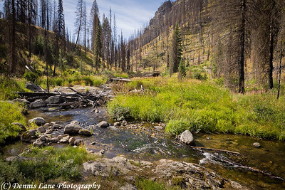 Mountain Stream near - Warm Lake, Id -Note File Name below for ordering