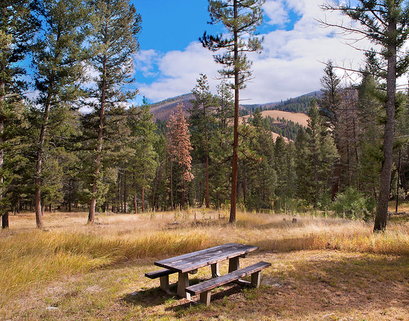 Montana Camp site - near Sula, MT -  file name for ordering listed below