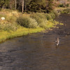 Fly Fisherman in the Bolder River near Livingston, MT