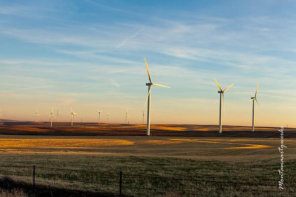 Wind Turbines Near Condon
