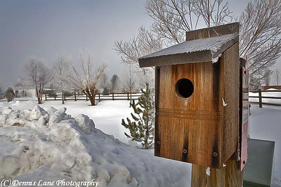 WInter Bird House - Cascade, ID -Note File Name below for ordering