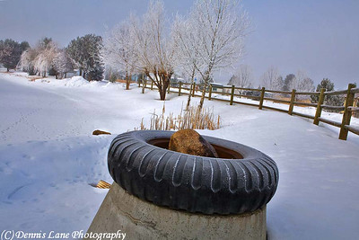 Frozen Truck Tire, Cascade, ID -Note File Name below for ordering