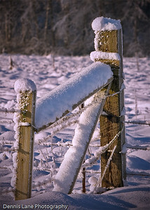 Snow Laden Fence -North Cascade from near Everett, WA - Note File Name below for ordering
