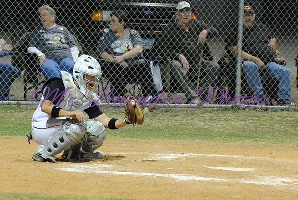 2009 High School Baseball Season