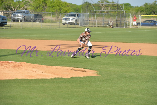 2017 High School Baseball Season