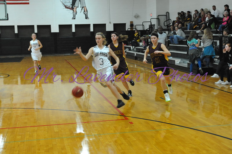 2012 - 2013  High School Basketball Season